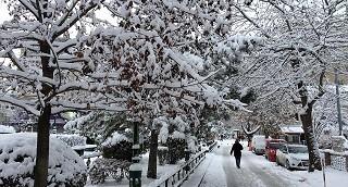 Doğu Karadeniz için yoğun kar yağışı uyarısı