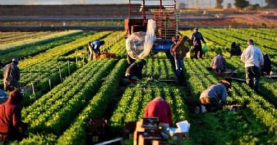 Organik tarım desteğinde son gün 24 Mart