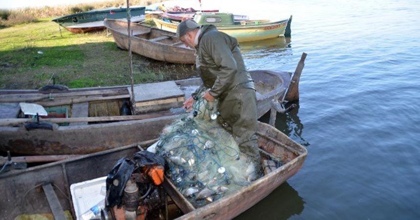 İsrail sazanı, diğer balıkları yok etti