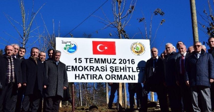 '15 Temmuz Şehitler Hatıra Ormanı' törenle açıldı