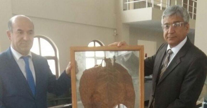 Kaymakam Kubalı, Tütün Müzesi'ni inceledi