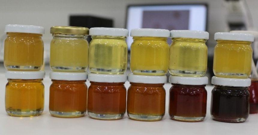 Arıcılıkta antibiyotikler sağlığı tehdit ediyor