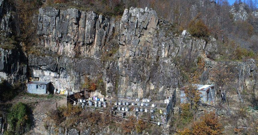 Ayılar yüzünden kovanları kayalıklara taşıdı