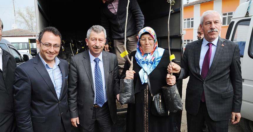 Alaçam'da üreticilere ceviz fidanı dağıtıldı