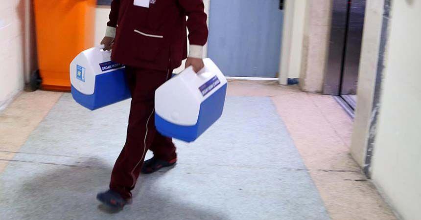 Türkiye'de 30 bin hasta organ bekliyor