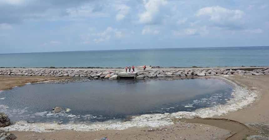Koku gelen sahil temizleniyor