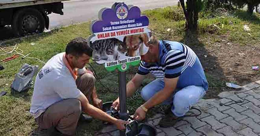 Terme'de sokak hayvanları unutulmadı
