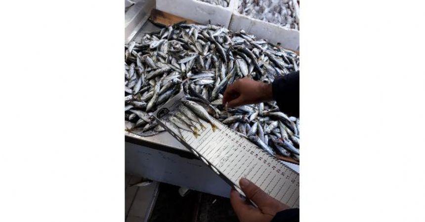Balıkçılar denetlendi