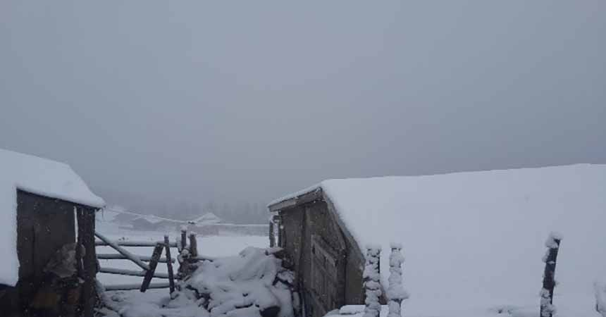 Giresun'da kar yağışı etkili oldu
