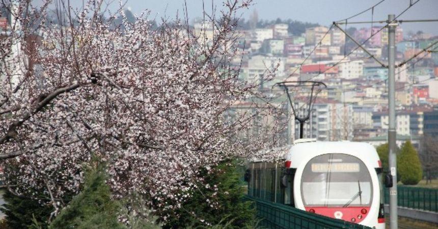 Bahar göz kırptı!