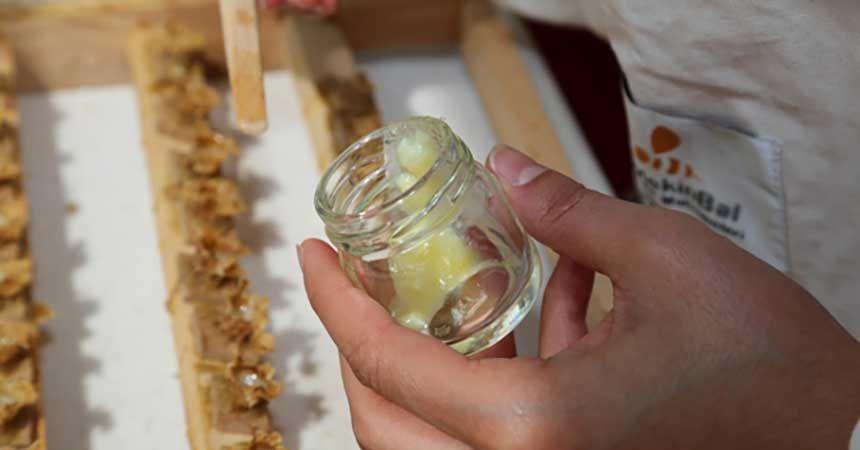 Ordu arı sütü üretiminde iddialı