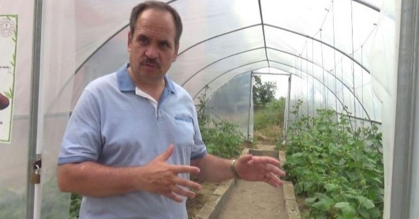 Okulda yerli tohum üretimi