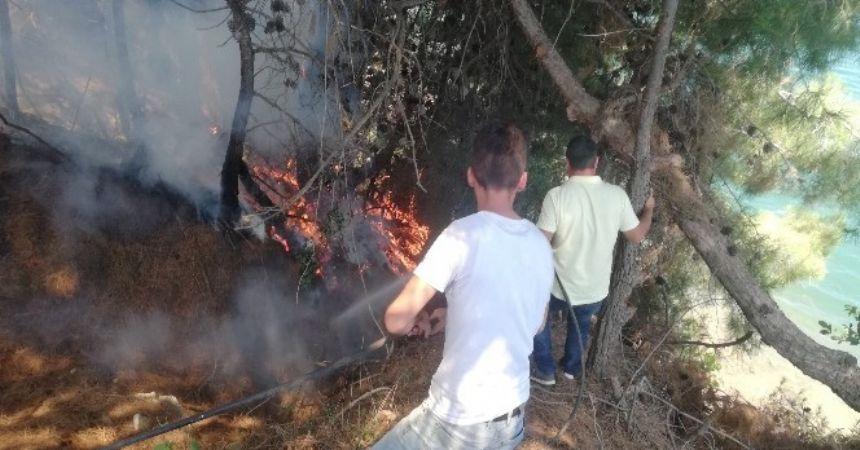 Piknikçiler ormanı yaktı