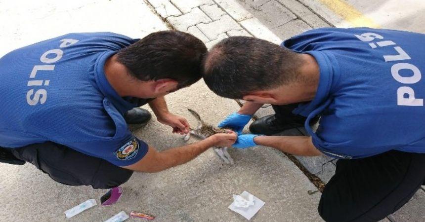Polisler kediyi kurtardı