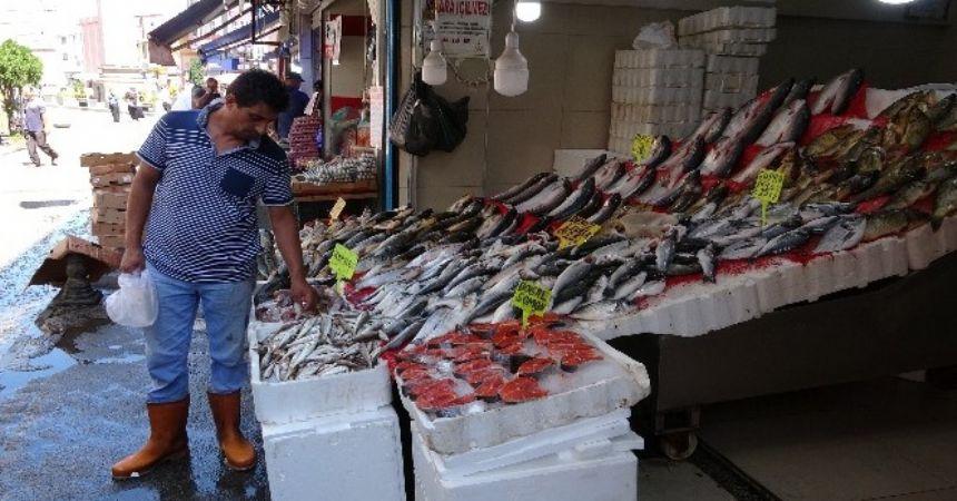 Balıkta kurban durgunluğu