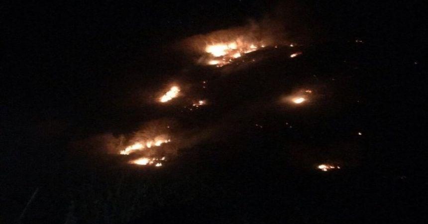 Ayvacık'ta yangın
