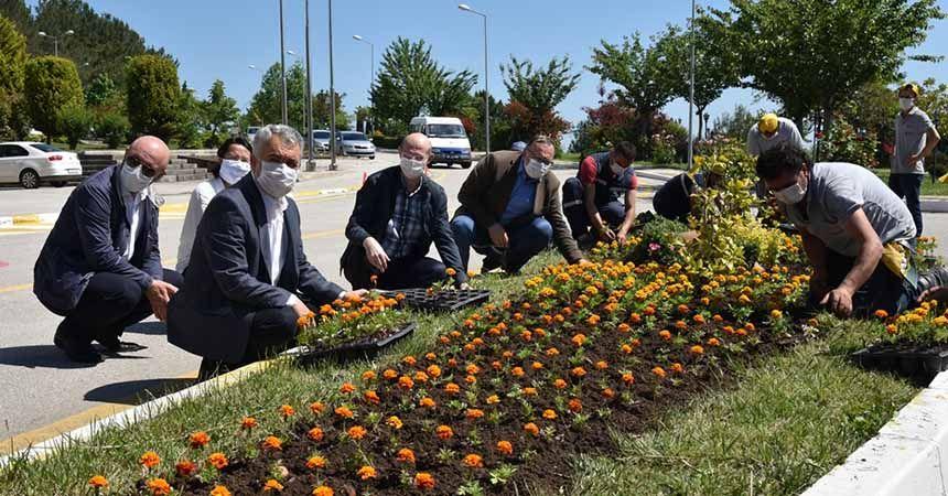 Çevre Günü'nde çiçekler toprakla buluştu