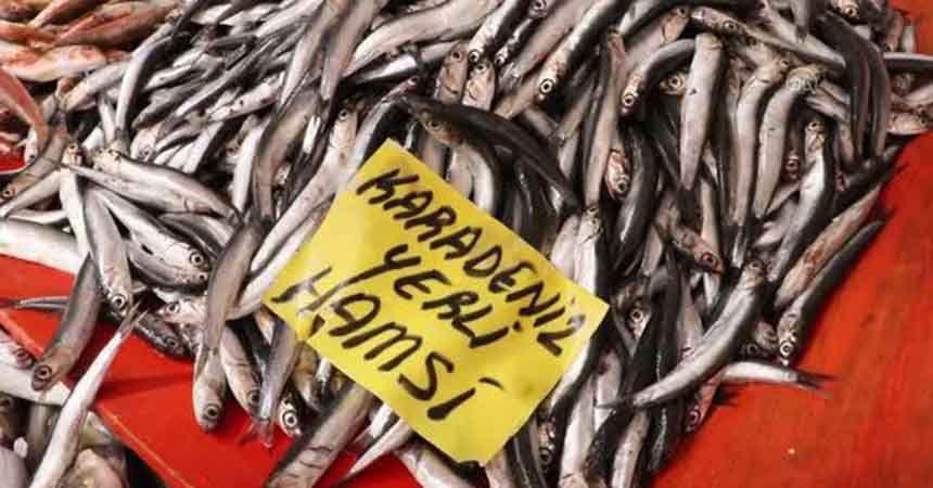 Pandemi Samsunlu balıkçıları da 'kötü' etkiledi
