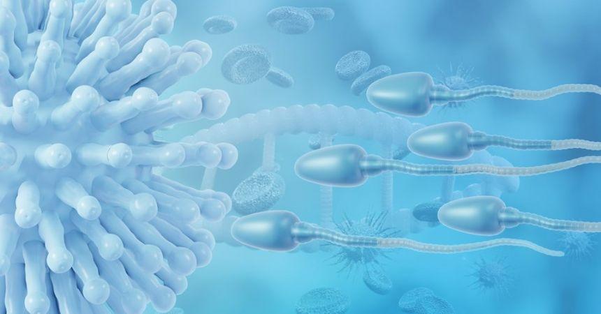 Kovid-19 aşısı sperme zarar veriyor mu?