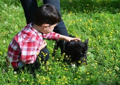 Mert Efe, kedisinin peşinden gitmiş