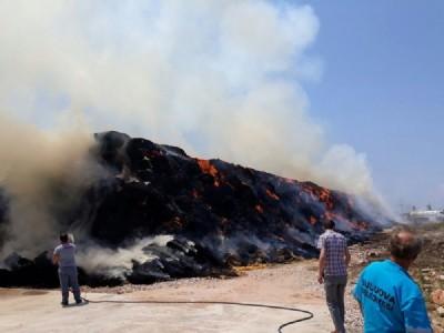 Suluova'da besi çiftliğinde yangın