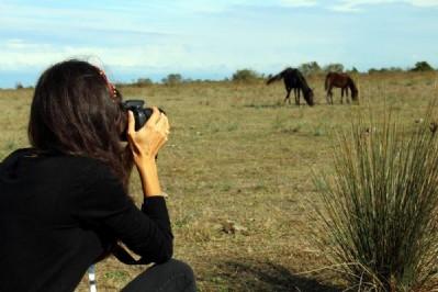 'Fotoğraf Avcılarına Rastgele'