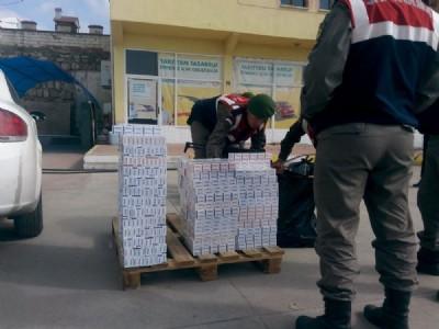 Tosya'da kaçak sigara avı
