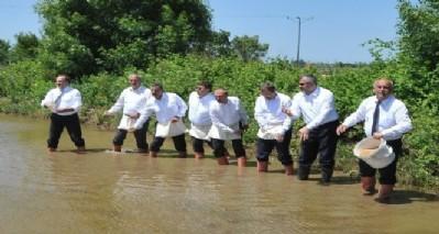 Çeltik tohumları suyla buluştu