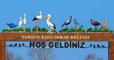 Kuş cenneti araç trafiğine kapatıldı