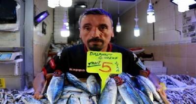 Samsun'da palamut 5 lira