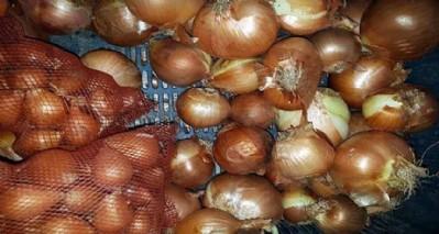 Ziraat Odası'ndan soğan stokçularına uyarı
