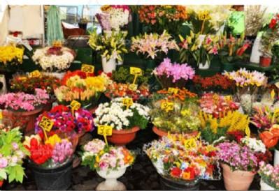 Annelerin çiçekleri eve servis