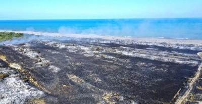 Kızılırmak Deltası yangınına soruşturma