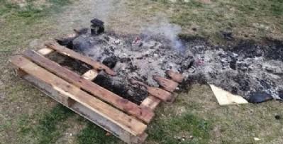 Hayvan kulübelerini yaktılar!