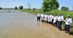 Bafra Ovası'nda çeltik tohumları suyla buluştu